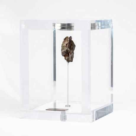 Space Box // Siberian Sikhote Alin Meteorite // Ver. 1