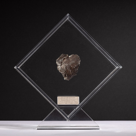 Siberian Sikhote Alin Meteorite + Acrylic Display // Ver. 7