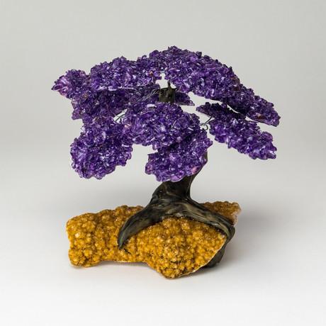 The Empowerment Tree // Amethyst Tree + Citrine Matrix // Large
