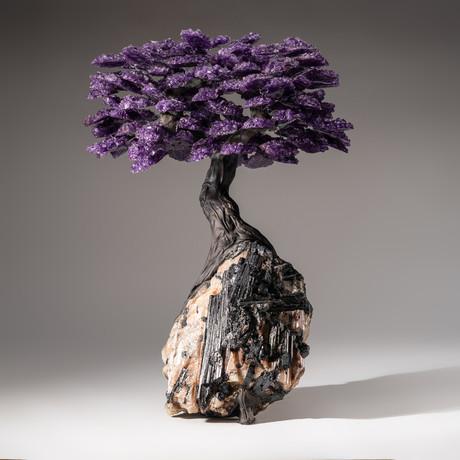 Tree of Pure Balance // Amethyst Tree + Quartz and Black Tourmaline Matrix // Custom
