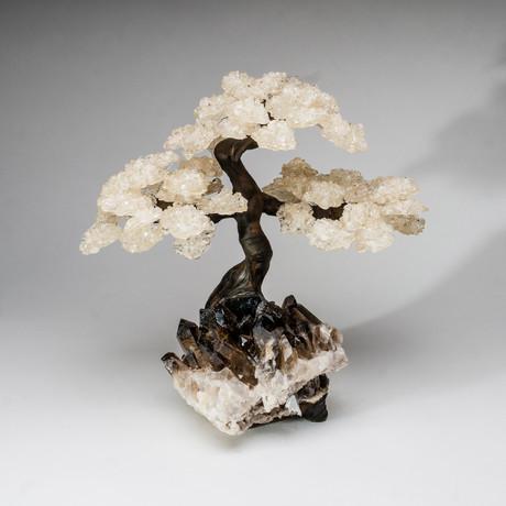 The Tranquility Tree // White Quartz Tree + Smokey Quartz Matrix // Custom XL