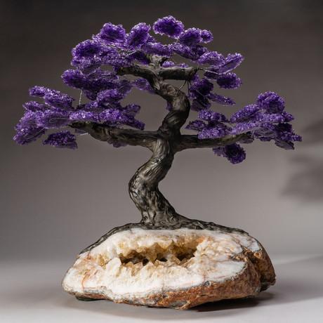 The Empowerment Tree // Amethyst Tree + Citrine Matrix // Custom