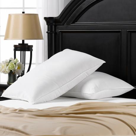 Overstuffed Plush Allergy Resistant Gel Filled Side/Back Sleeper Pillow // Set of 2 (Standard)