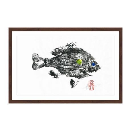 """Sunfish (12""""H x 18""""W x 1.5""""D)"""