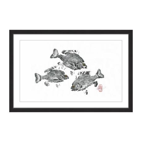 "Twirling Sunfish (8""H x 12""W x 1.5""D)"