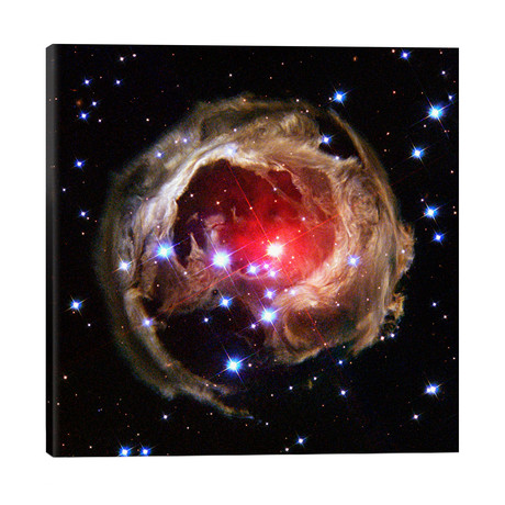 "V838 Monocerotis (Hubble Space Telescope) // NASA (26""W x 26""H x 1.5""D)"