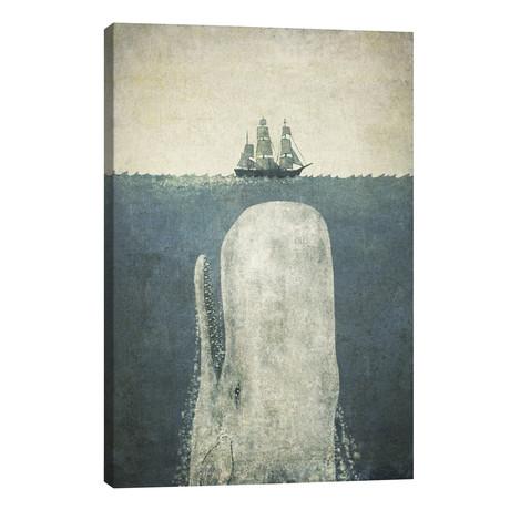 White Whale // Terry Fan