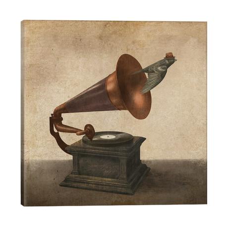 """Vintage Songbird II // Terry Fan (26""""W x 26""""H x 1.5""""D)"""