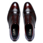 Captoe Oxford // Wine Red (US: 11)