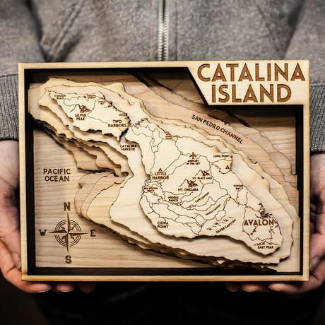 """Catalina Island (6""""W x 8""""H x 1.5""""D)"""