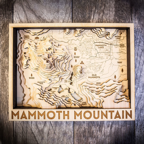 "Mammoth Mountain (10""W x 13""H x 1.5""D)"