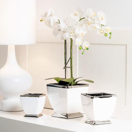 "Talia Silver Trim Ceramic Pedestal Pot (6""L x 6""W)"