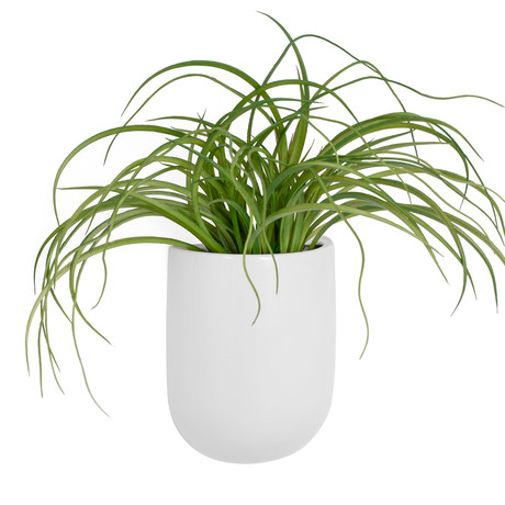Centra Ceramic White Wall Vase Planter (Tall)