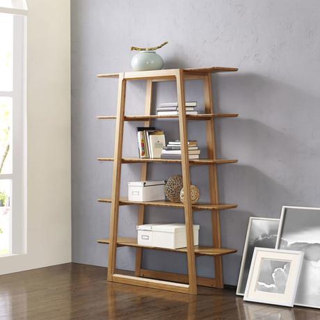 Currant Bookshelf