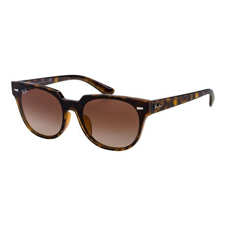 Men's RB4368NF-710-13-45 Sunglasses // Havana + Brown