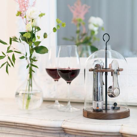 Globe // Wine Tools Set Under Dome