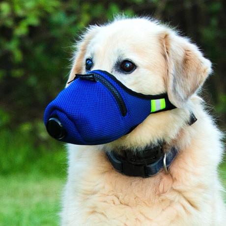 K9 Mask® Air Filter Mask for Dogs // Medium