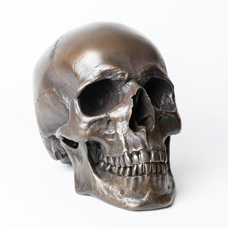 Human Skull // Darkened Bronze