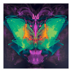 "Satan's Butterfly (16""W x 16""H x 0.625""D)"