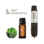 Drive Time Diffuser Bundle // B06 Mint Eucalyptus