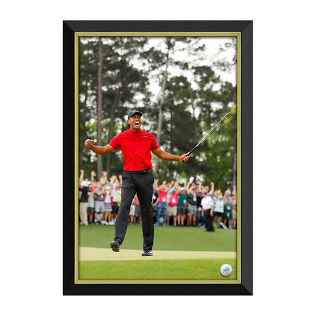 Tiger Woods // Masters Champion Facsimile Signed Golf Ball // Framed Canvas