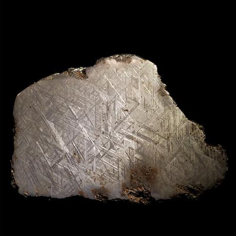 Muonionalusta Meteorite Slice // Ver. IV