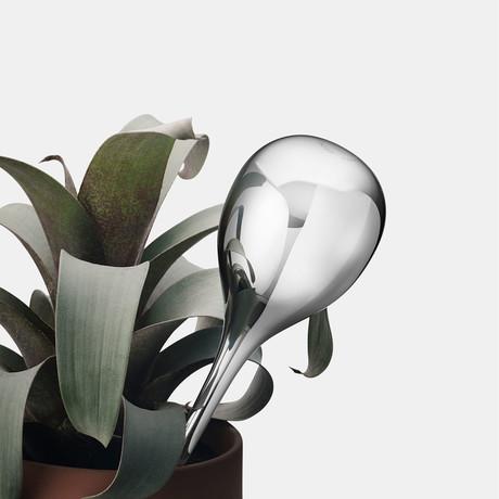Terra Watering Globe // Stainless Steel