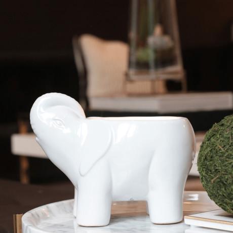 Elephant Candle // White