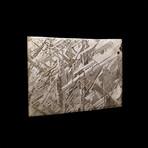 Muonionalusta Meteorite Slice // Ver. III