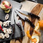 Pakkawood Steak Knife // Set of 4