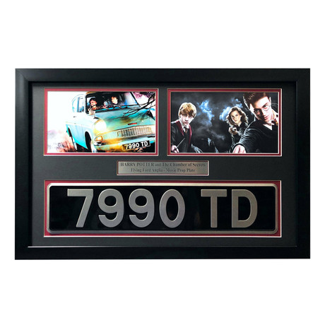 """Harry Potter"" Flying // Movie Car License Plate Framed // Collage Chamber of Secrets"