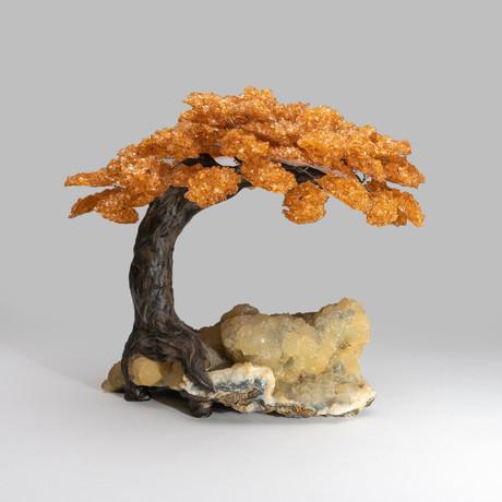 Genuine Custom Citrine Clustered Gemstone Tree on Chalcedony Matrix