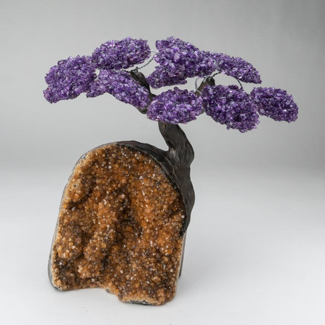 The Empowerment Tree // Custom Amethyst Tree + Citrine Matrix // V2