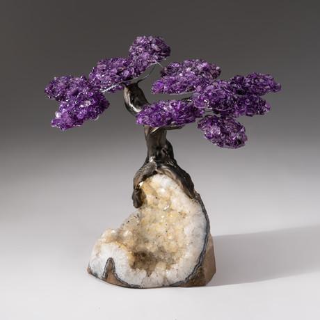 The Relaxation Tree // Custom Amethyst Tree + Clear Quartz Matrix // V2