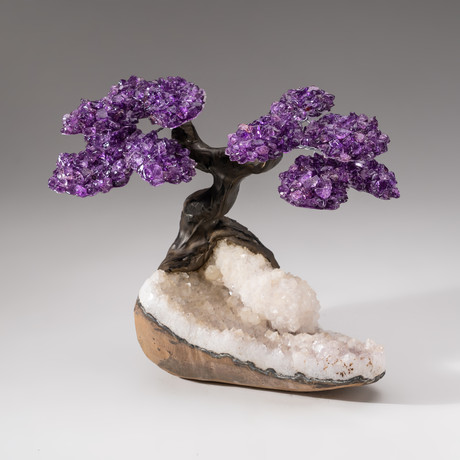 The Relaxation Tree // Custom Amethyst Tree + Clear Quartz Matrix // V1