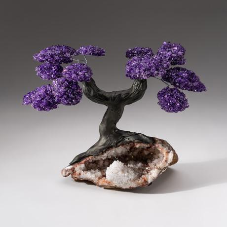 Custom Amethyst Tree + Red Quartz Matrix