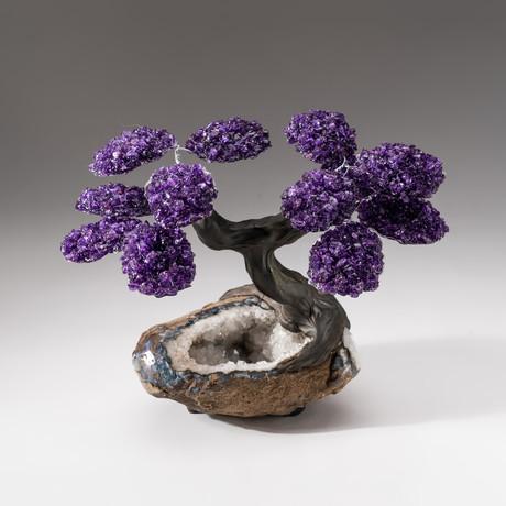 The Relaxation Tree // Custom Amethyst Tree + Clear Quartz // V1