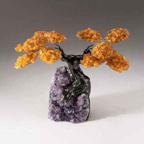 The Money Tree // Custom Citrine Tree + Amethyst Tree // V3