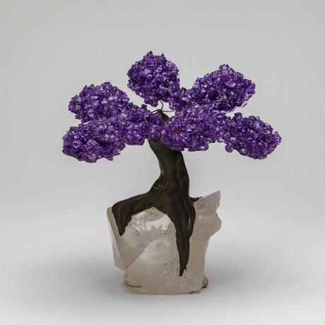 The Relaxation Tree // Amethyst Tree + Quartz Crystal // Medium
