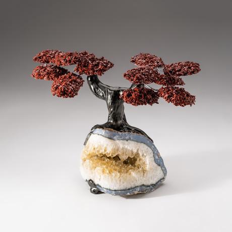 The Safety Tree // Custom Red Jasper Tree + Citrine Matrix // V2