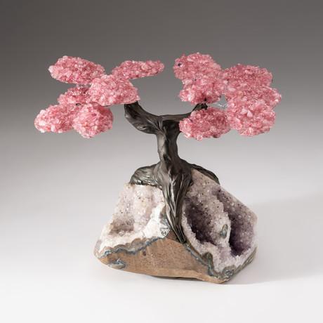 The Love Tree // Custom Rose Quartz Tree + Amethyst Matrix // V11