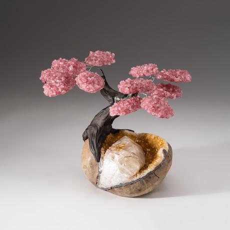 The Comfort Tree // Custom Rose Quartz Tree + Citrine Matrix // V5