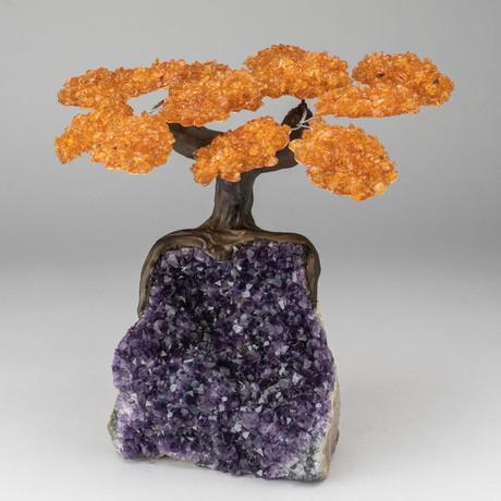 The Money Tree // Custom Citrine Tree + Amethyst Tree // V2