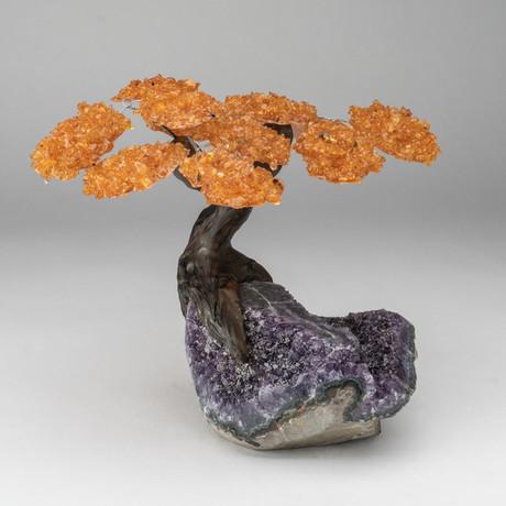 The Money Tree // Custom Citrine Tree + Amethyst Tree // V1