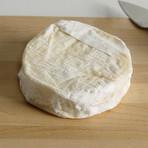 Artisan Cheese Collection // Set of 9 // 5.3 lb