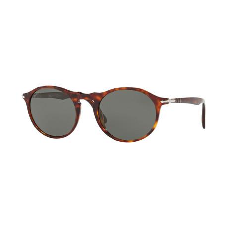 Men's 3204SM Oval Polarized Sunglasses // Havana + Gray