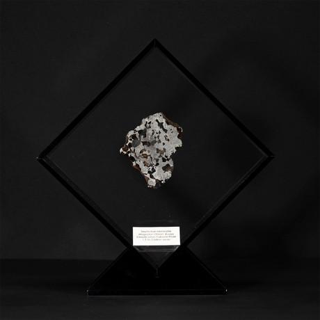 Seymchan Olivine Meteorite // Magadanskaya Oblast // Black Acrylic Display // Ver. 2