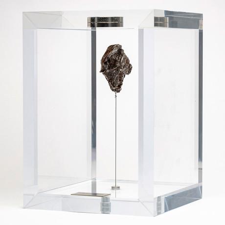 Sikhote Alin Meteorite // Siberia // Medium Space Box // Ver. 2