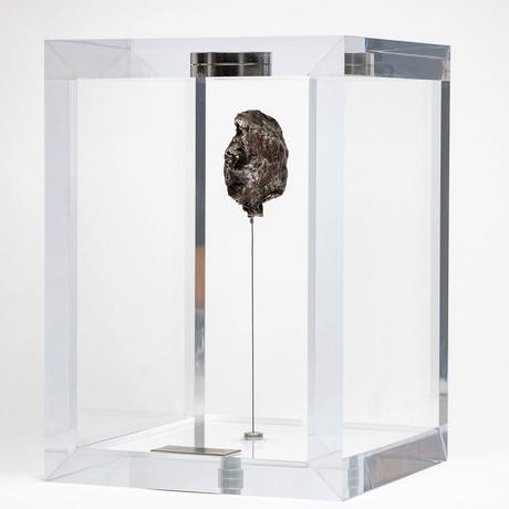 Sikhote Alin Meteorite // Siberia // Medium Space Box // Ver. 1