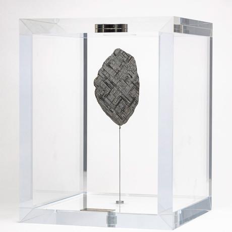Muonionalusta Meteorite // Sweden // Large Space Box